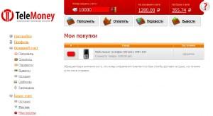 Отзывы о TeleMoney.ru